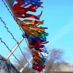 This Oklahoma Life: Metallic Fringe, Used Cars
