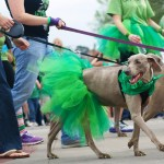 Oklahoma City's St. Patrick's Day Parade