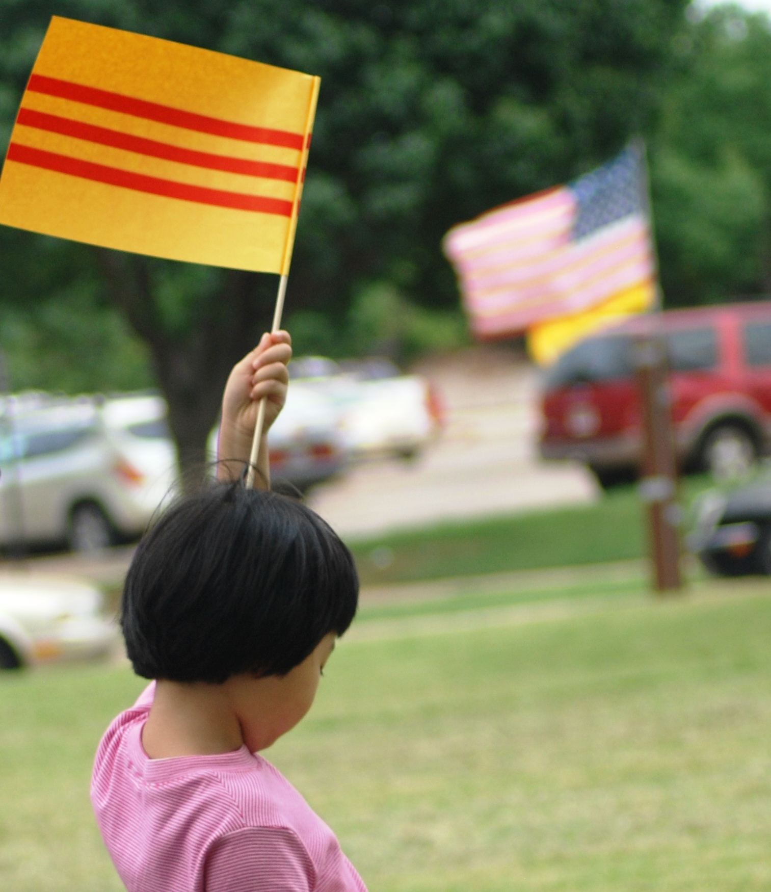 Vietnam Child Flags