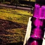 Purple Water Bottle in the Sun