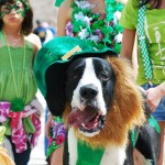 St. Patrick's Day Parade Oklahoma City [photo essay]