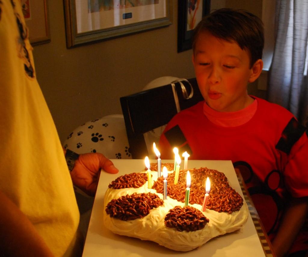 Wild Kratts Birthday Cake