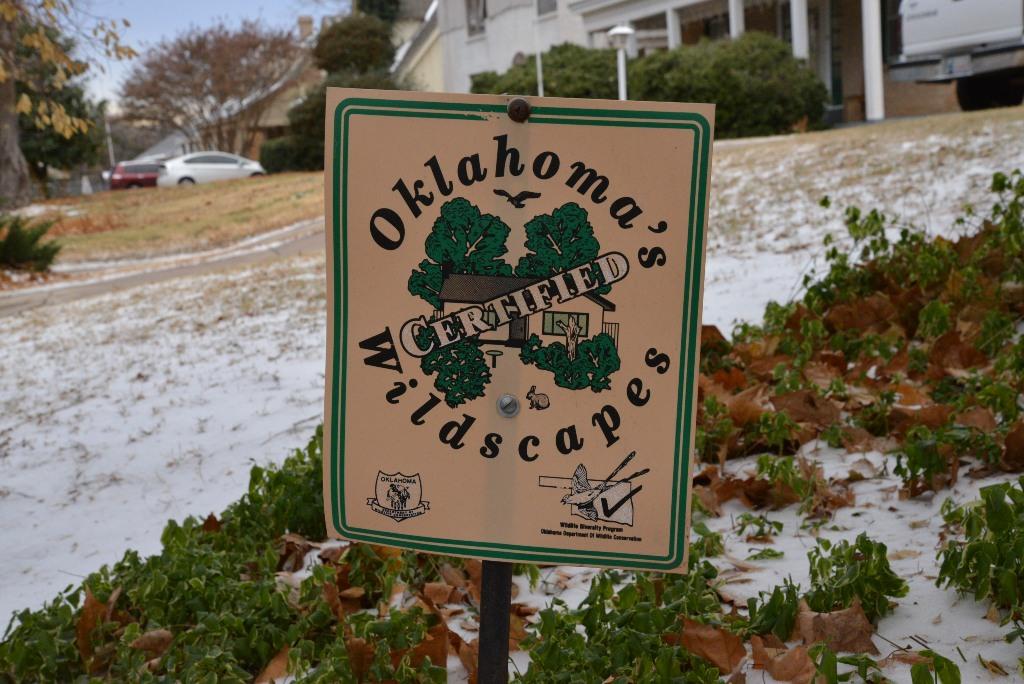 Oklahoma Certified Wildscape