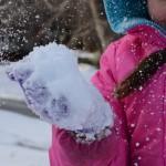 Snow Days, #Snowquake, Weatherization [Field Journal: Weeks 48 and 49]