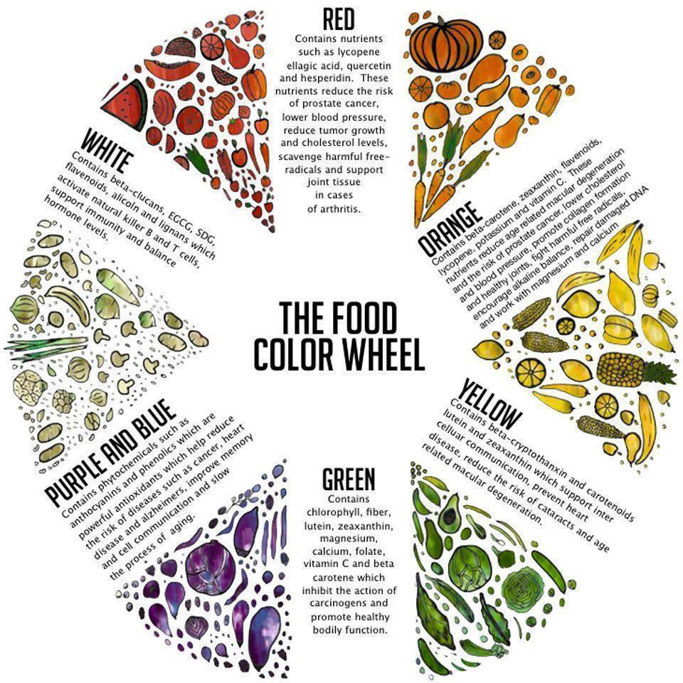 food color guide