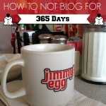 365 Days Of Me Not Blogging