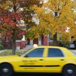 Taxi, OKC, Autumn