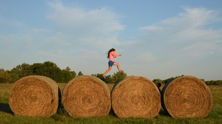 Jumping Hay Bales