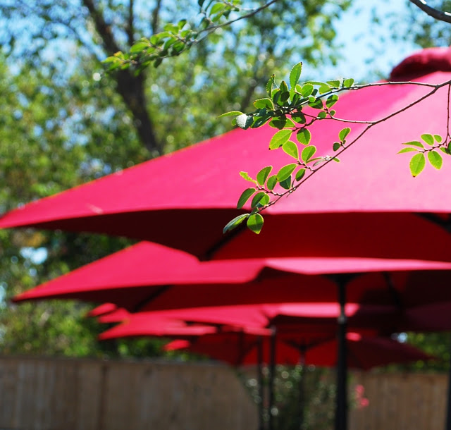 Red umbrellas at Tucker's Onion Burgers