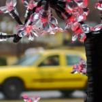 Yellow Cab Through A Window